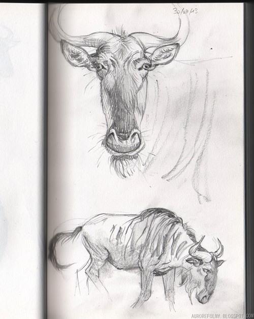 [Sketchbook] Les carnets de Virid Rain - Page 3 Gnous2