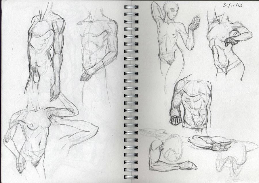 [defis] IM Training 3 - Page 2 Bras2