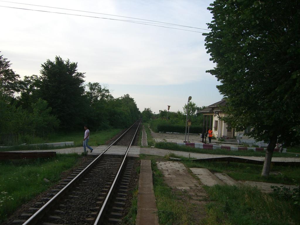 901 : Bucuresti Nord - Titu - Pitesti - Piatra Olt - Craiova - Pagina 3 CIMG8574-1