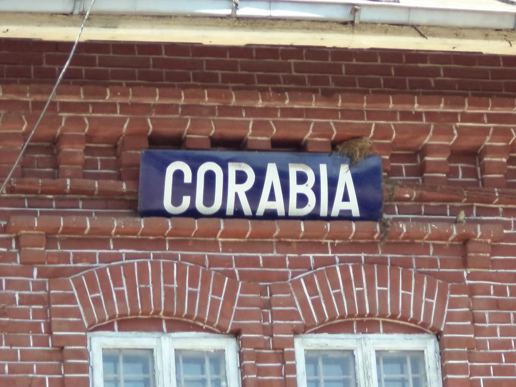 910 : Piatra Olt - Caracal - Corabia - Pagina 2 DSC01442_zps5e956074