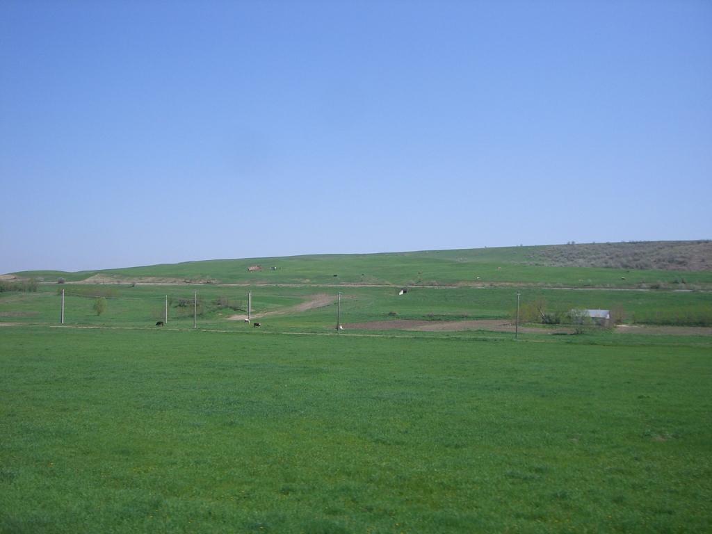 609 : Dingeni - Saveni - Drăguşeni CIMG8512