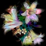 Aromaterapia. 41b69589