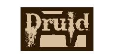 Klasy Postaci Druid_zpsa15fbc0a
