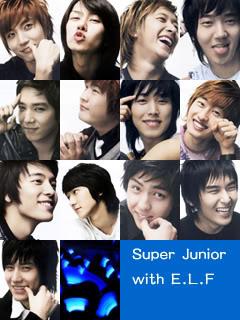 ¿Quién es tu novio Super Junior? 4