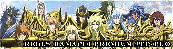 SAINTS GOLD Hamachi-1