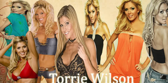smackdown superstars Torriewilsonbanner1final
