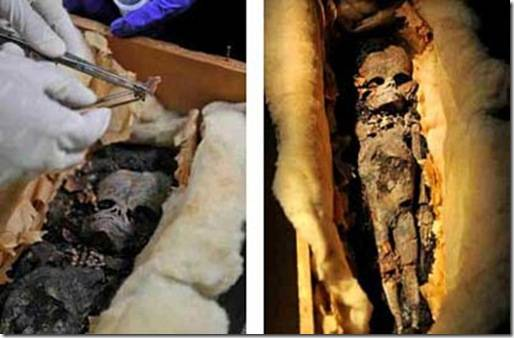 Extraterrestrial Mummy Found In Egypt 20100309_thumb