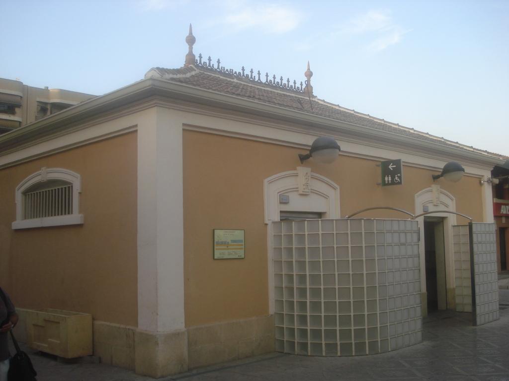Cercanías Murcia/Alicante - Página 3 DSC00022