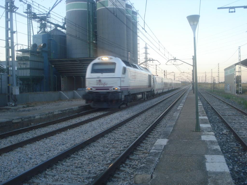 Línea Madrid-Alcázar de San Juan-Manzanares-Córdoba-Sevilla-Cádiz DSC00648
