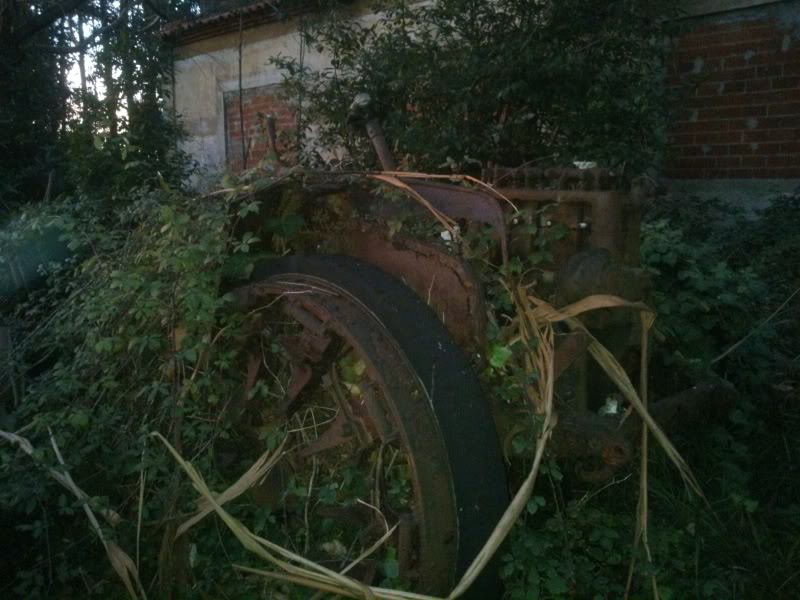 Coches abandonados en Podes(Avilés) - Página 2 DSC_2130
