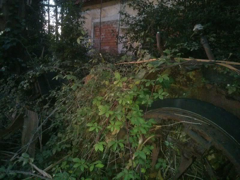 Coches abandonados en Podes(Avilés) - Página 2 DSC_2132