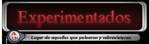 -HISTORIA DE LOS GRUPOS- Experimentados3