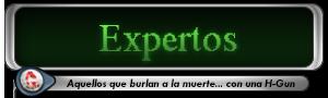 -HISTORIA DE LOS GRUPOS- Expertos2