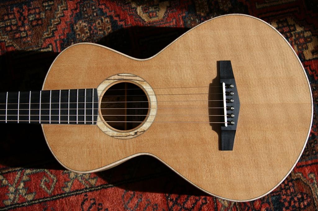 Un jeune luthier français à découvrir : Thibault Le Cohu DSC02113