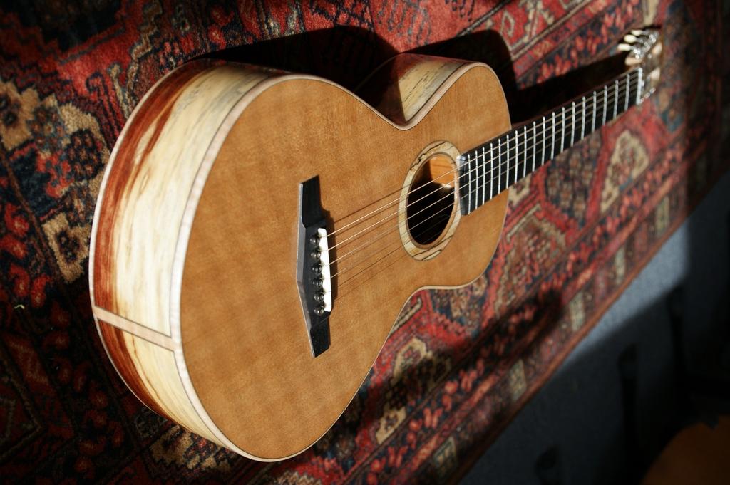 Un jeune luthier français à découvrir : Thibault Le Cohu DSC02114