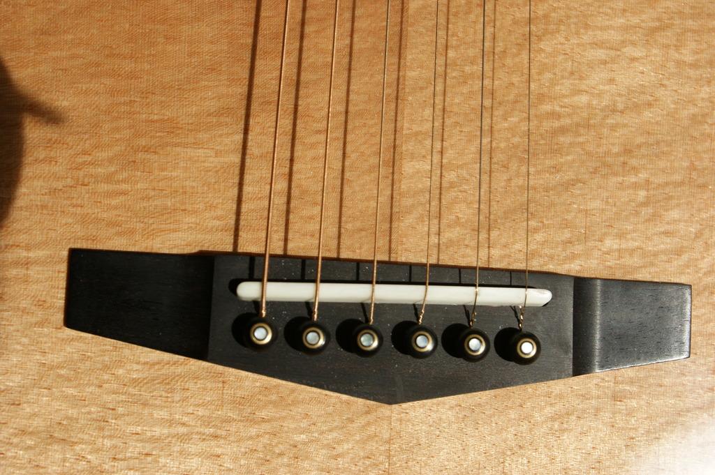 Un jeune luthier français à découvrir : Thibault Le Cohu DSC02117