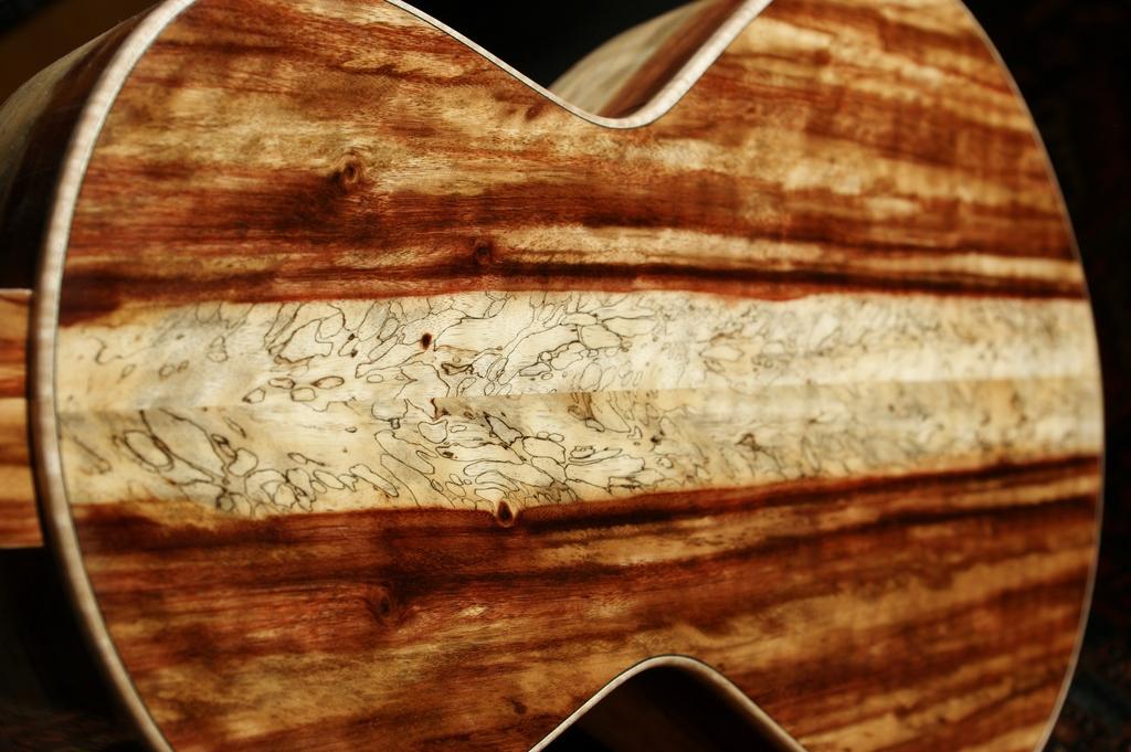 Un jeune luthier français à découvrir : Thibault Le Cohu DSC02118