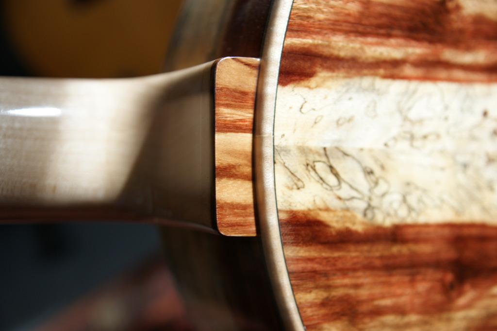 Un jeune luthier français à découvrir : Thibault Le Cohu DSC02120