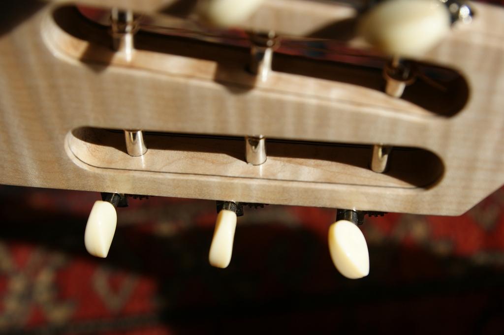 Un jeune luthier français à découvrir : Thibault Le Cohu DSC02122