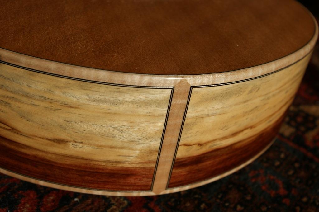 Un jeune luthier français à découvrir : Thibault Le Cohu DSC02126