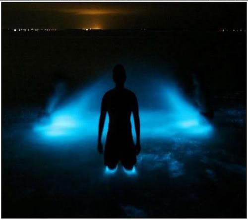 البحيرة المضيئة مناظر خلابه  Bioluminescent-Lake-in-Australia-6-580x413