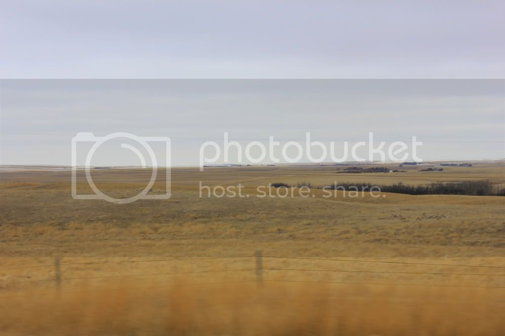 For those of you who have never been to the Canadian Prairies.... IMG_1952