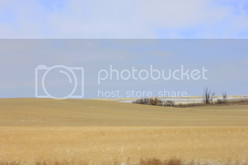 For those of you who have never been to the Canadian Prairies.... IMG_1992