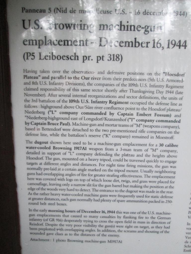 Ardennes December 2014 -70th Anniversary IMG_1322_zps2b753443