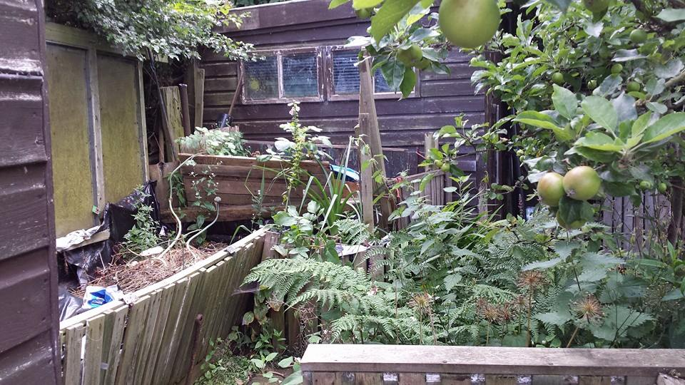 Compost Heap to Rabbit Residence. FINISHED 15-7before2_zps6c83eda1