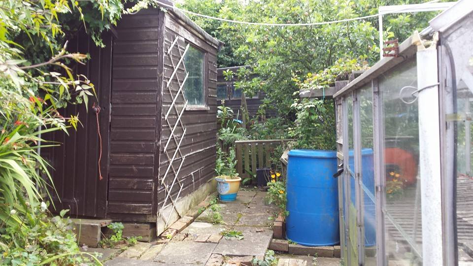 Compost Heap to Rabbit Residence. FINISHED 15-7before_zps83fb97d1