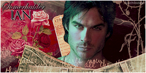 {# We are the kings and queens #} Iansomerhalderfirma