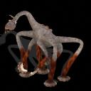 Fauna de Boloran Cabiscorpio_zps81881f1f