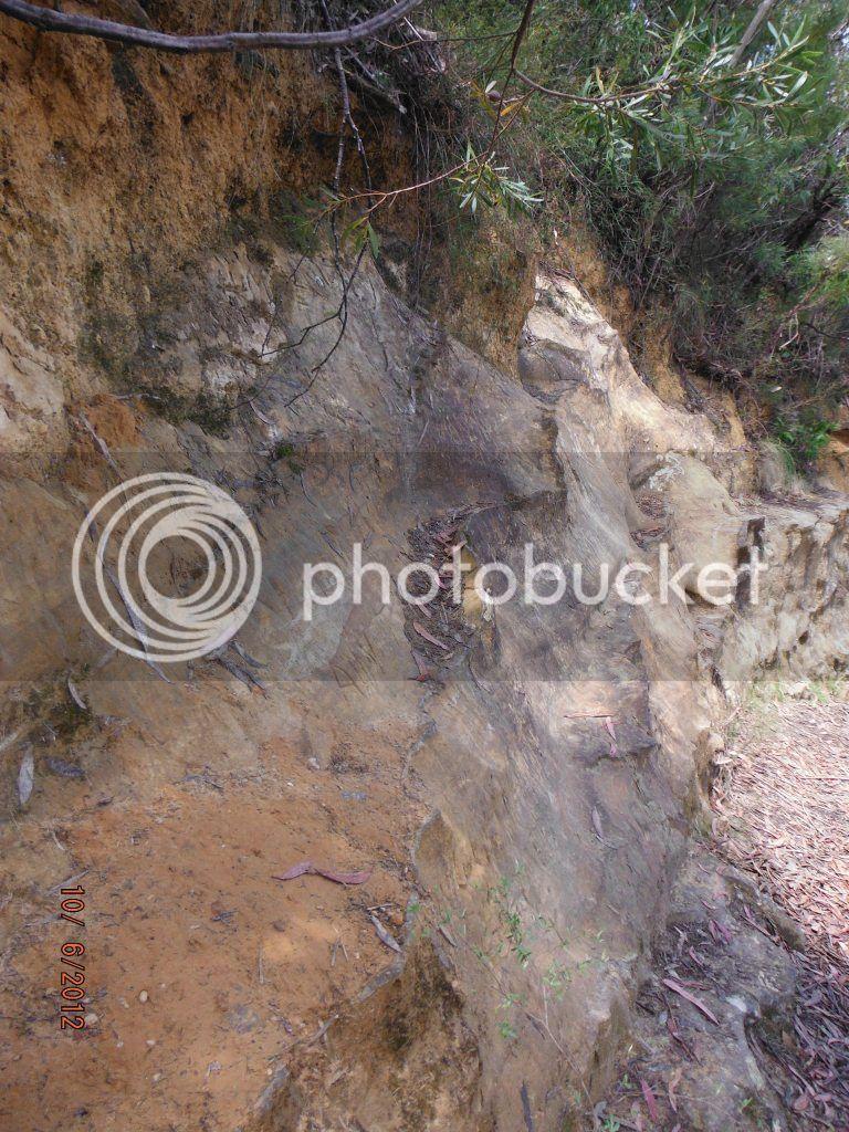 அழகு மலைகளின் காட்சிகள் சில.....01 - Page 39 DSCF0936