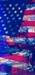 God bless America [Élite] B35x75_zpsf0d344bf