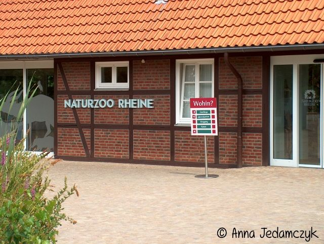 Naturzoo Rheine HPIM8555_zps7c1feebf