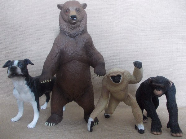 My Papo-Newcomers of 2013 - Page 3 Papogrizzlygibboncomparison_zpsac1df2af