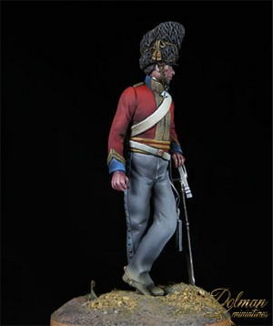 DOLMAN MINIATURES...SCOTS GREYS AND CONFEDEDERATE CAVARLY Scot14_zpsda2957eb
