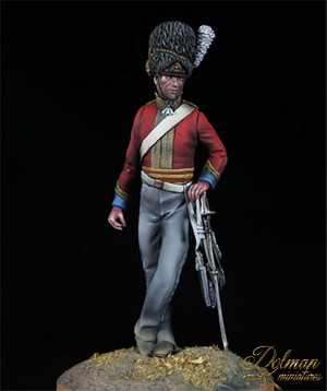 DOLMAN MINIATURES...SCOTS GREYS AND CONFEDEDERATE CAVARLY Scot2_zps72eb5207