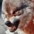 Hielo y Fuego ~ Confirmación Elite 50x50-hampf