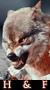 Hielo y Fuego ~ Confirmación Elite 50x90-fuego