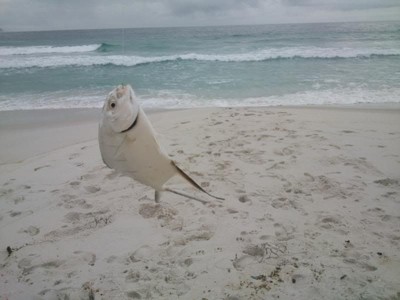 24/11 praia do foguete DSC_0315_zps2d434120