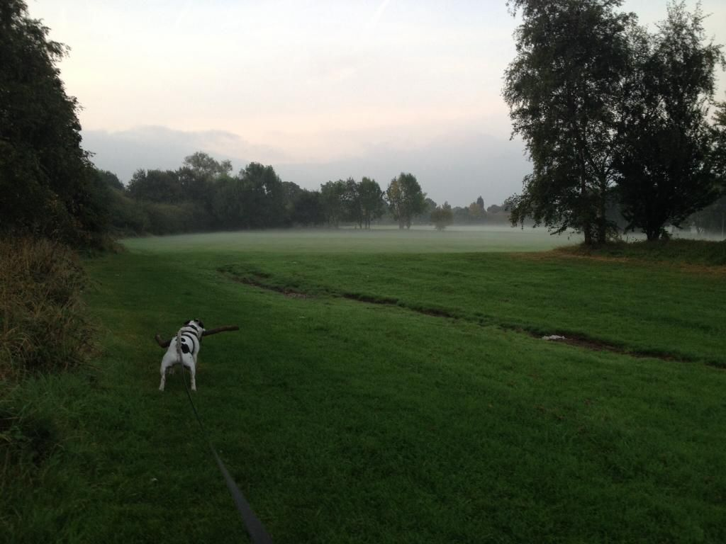Eerie this morning Imagejpg1_zps1d162a66