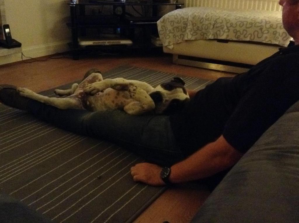 Pre bedtime cuddles with Daddy Imagejpg1_zpsf5e9358e