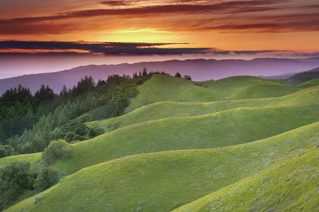 Mt. Tamalpais, California photo sNP0g9l.jpg