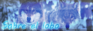 Información sobre el Lobo