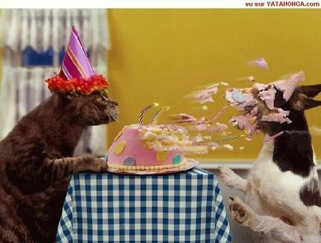Happy Birthday Eldo! Happy-Birthday-6_zpsd54ca5ba