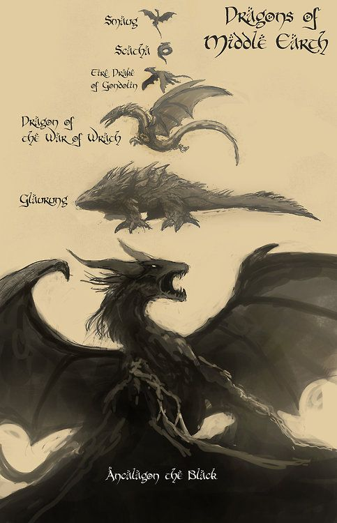 DRAGONS - Page 2 MEdragons_zps4d3bea41
