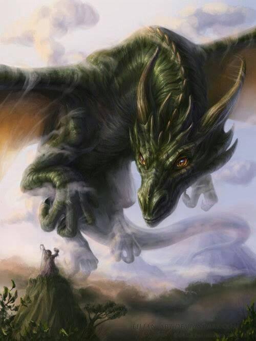 Smaug - Page 2 Dragon2_zps2eb6de51