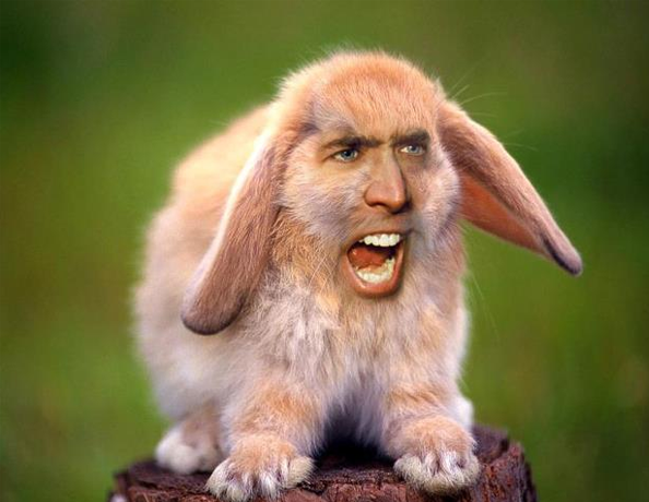 Could Tolkien Have Fixed The Hobbit Films? - Page 4 Nic-cage-lkasndlansd_zpslm8gglgq