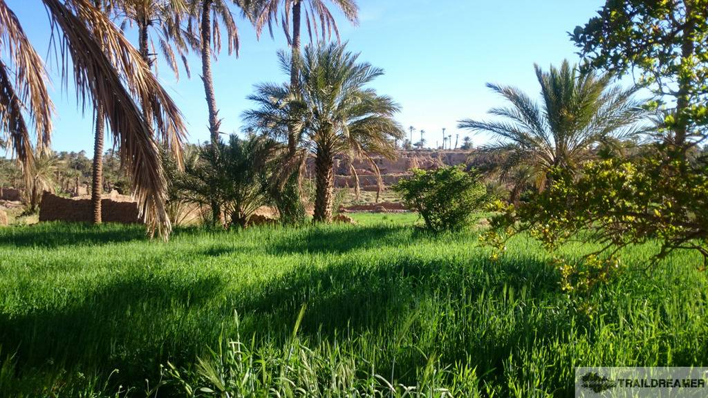 Marruecos 2015: 3000 km off road Sin%20tiacutetulo%20341%20de%20436_zps5cos6b7i